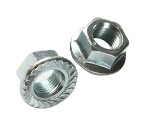 Flange Nuts Fasteners Manufacturers in India